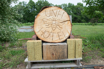Bee Hotel at the University of New Hampshire