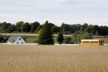 school bus in field