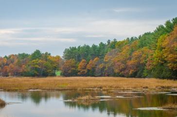 Great Bay in fall