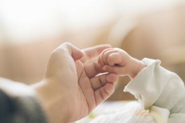A photograph of an adult and baby holding hands