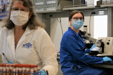 UNH Veterinary Diagnostic Lab Safeguarding Animal and Public Health in State, Region