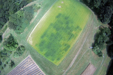 UNH cover crops