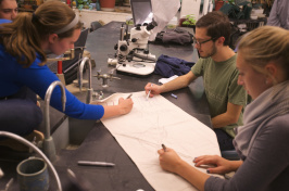 students in marine biology class