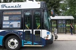 wildcat transit bus