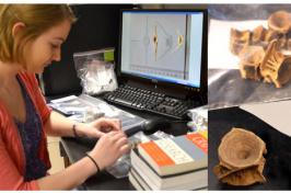 courtney mills conducting research on codfish bones