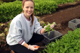 emily mckeen cutting lettuce from garden