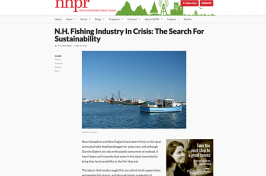 picture of nhpg.org web page