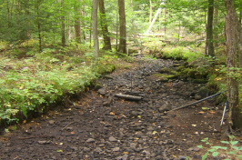 dry stream bed with scientific sensor in the middle
