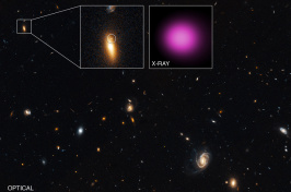 Telescope image of space, with bright yellow and bright purple objects highlighted