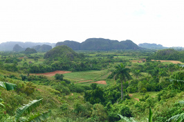 Cuba: View from the Balcon de Valley
