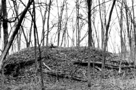Pre-European Archaeological Monument Site in Michigan