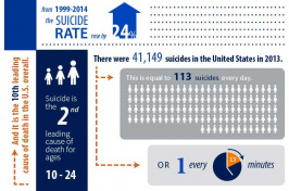 A chart showing suicide rates in the United States