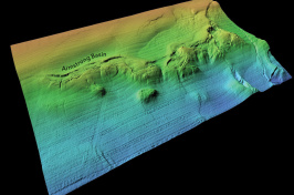 multicolored image of seafloor feature