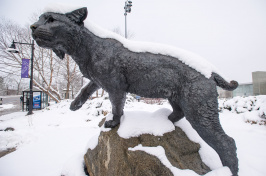 UNH's Wildcat statue in winter
