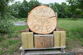 UNH bee hotel