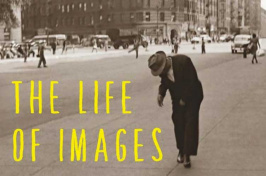 The Life of Images cover