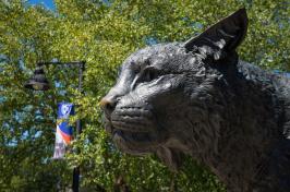 Wildcat statue at University of New Hampshire