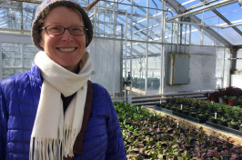 Becky Sideman, in the MacFarlane greenhouse at the University of New Hampshire.