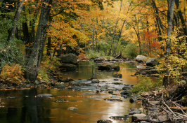 a New Hampshire river during autumn