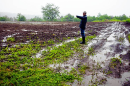 Jane Presby, owner of Dimond Hill Farm in Concord, points to one of the fields yet to be fully planted because of water (GEOFF FORESTER photos / Monitor staff)