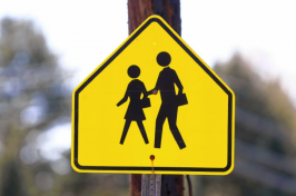school pedestrian road sign