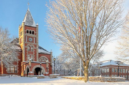 T-Hall Winter