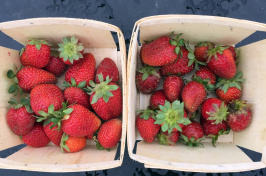 two quarts of strawberries