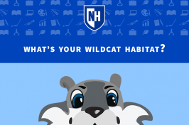 An illustration of Wild E. Cat UNH's 603 Challenge quiz