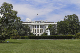 image of the whitehouse