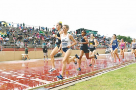 Elinor Purrier of the University of New Hampshire takes control of the race early to win her quarterfinal heat Saturday at the NCAA East Preliminary Round meet at USF Track and Field Stadium at the University of South Florida in Tampa, Fla. (Photo: USA TODAY Sports)