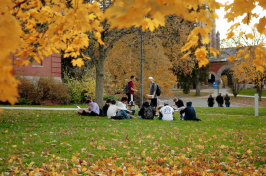 Students sitting on T Hall lawn