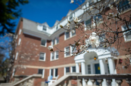 flowers blooming on the UNH campus in spring