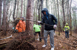 UNH student volunteers cleaning up College Woods on Durham campus