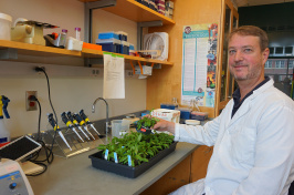 Kevin Culligan holds a Arabidopsis thaliana plant in his lab.