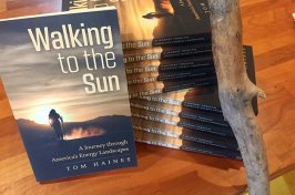 Walking to the Sun book cover