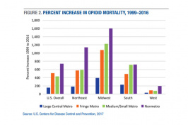 Bar graph of the percent increase in opioid mortality, 1999-2016
