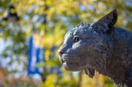 UNH's Wildcat statue in fall