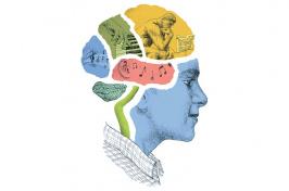 Music to Their Brains