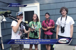 Birdwatchers in Durham
