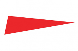 Red flag icon
