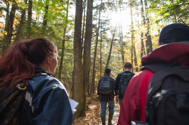 UNH students walking in the woods