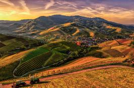 Image of rural farmland