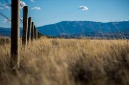 grasslands in Wyoming