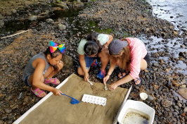 UNH Manchester Summer Program Combines English Learning with STEM Skills
