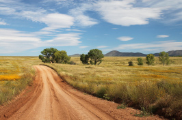 Image of a dirt country road