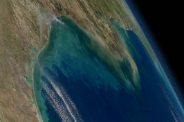 A satellite image of the Gulf of Mexico