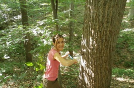 Woman bores small core from tree in forest.