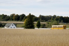 school bus in field