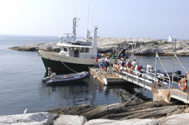 boat docking at the Shoals Marine Lab