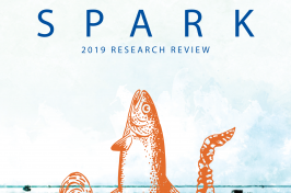 SPARK 2019 Issuu flipbook